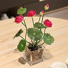 NOHOPE Hyazinthe/Lotus Emulation Blume mit Glas