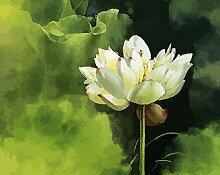NoNo DIY Digitale Malerei Lotus Blumeadult Digital