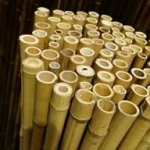 NOOR Bambusmatte Deluxe 2,0 x 2,5 m
