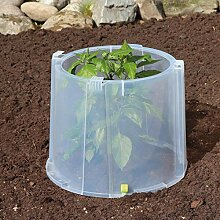Noor Pflanzenschutz