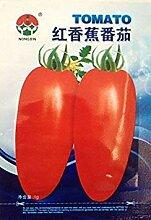 Obst- und Gemüsesamen rote Banane Tomaten-Samen