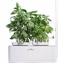 Odyseed Eden - Hausgarten - Ziehen Sie Ihre