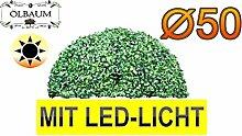 ÖLBAUM Buchsbaum mit LED-Lichtband große