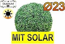 ÖLBAUM Buchsbaum mit Solarbeleuchtung, große