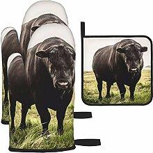 Ofenhandschuhe und Topflappen-Set, Big Black Angus