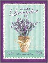 Old English Lavendel. Lavandula. Lila Pflanze. Topfpflanzen. Geruch. Duft. Wild. Blume. Verwendet In Ölen. Metall/Stahl Wandschild, stahl, 20 x 30 cm