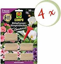 Oleanderhof® Sparset: 4 x COMPO Blühpflanzen