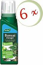 Oleanderhof® Sparset: 6 x WESTLAND® Bonsai