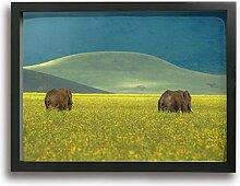 Olverz Untitled Leinwanddruck, gerahmt, 40,6 x
