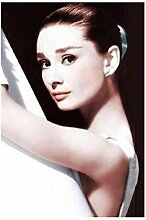 OMCCXO DIY Diamant Painting malerei Set Audrey