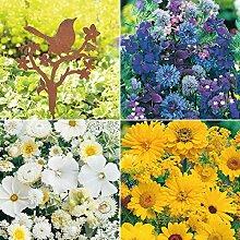 omgarten Blumensamen | Blütenträume Farbmix mit