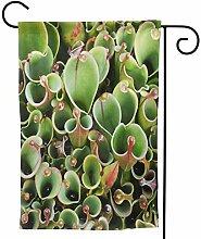 OMNVEQ Garten Flagge Haufen Sarracenia