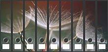 Ordnerrücken Sticker Blüten - Größe 58 x 32