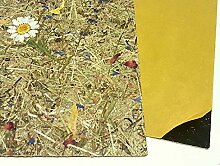 Organoid WSPALM0075FVSST Tapete Natur 132x305x0,15