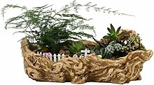 OUNONA Kreative Blumentopf Sukkulenten Bonsai