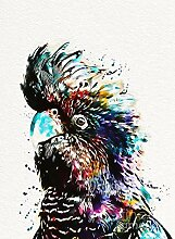 Owdqwg Australien Vogel Diamant Malerei schwarzen