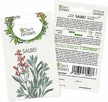 OwnGrown Premium Salbei Samen (Salvia