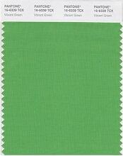 Pantone Smart Farbe Swatch Karte Hellgrün