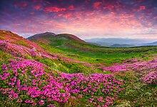 Papermoon Fototapete Rhododendron Blumen,