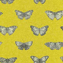 Papier Tapete TNT mit graue Schmetterlinge auf