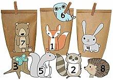 Papierdrachen DIY Adventskalender Waldtiere - Set