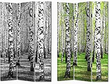 Paravent Birkenwald
