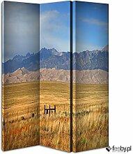 Paravent Design 120x 150cm 3Klappen Vorderseite (eine Seite) Steppe Berg -
