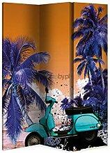 Paravent Design 160x 180cm 4Klappen Scooter (eine Seite)