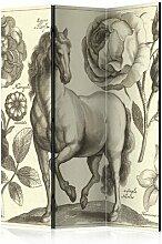 Paravent Horse II