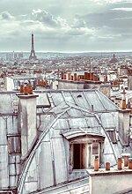 Paris Dächer Foto-Tapete 2-teilig - Fototapete Wallpaper 232x158cm. Beigelegt sind eine Packung Kleber und eine Klebeanleitung.
