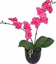 PASAMO 07573 künstliche Orchidee 30 cm Künstliche Pflanze