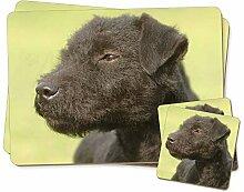 Patterdale Terrier Hunde Twin Untersetzer und