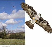 Patterned Falcon Drachen Vogelschreck & 6 m