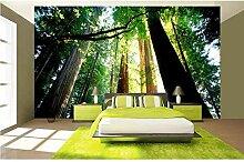 Pbldb Moderne 3D Tapete Anpassen Hd Waldlandschaft