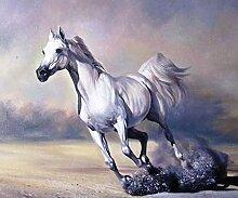 pectyxsw Laufendes weißes Pferd﹣ DIY 5D