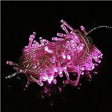 Pegasus 100 LED 10m rosa Schnur Dekoration Licht für Weihnachtsfest 110V 220V