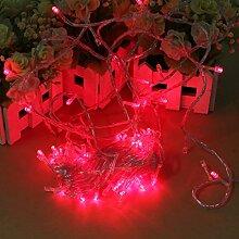 Pegasus 100 LED 10m rote Schnur Dekoration Licht 110V 220V