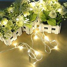 Pegasus 100 LED 10m warmes Weiß Schnur Dekoration Licht für Weihnachts
