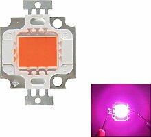 Pegasus Full Spectrum 10W Pink LED Pflanze wachsen helle Lampe Chip für Garten 9-12V