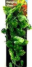 Penn Plax Reptologie-Kletterpflanze für