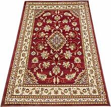 Perser Dessin Teppich Klassisch Teppich SALON 757-ROSSO 300X500