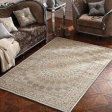 Persien Style Home Teppiche–memorecool Haustierhaus Acryl Faser reaktiver Druck Wohnzimmer/Schlafzimmer/Tisch/Sofa Bereich Teppiche Maschinenwaschbar 76,2x 119,4cm, Sun3, 55x79inch