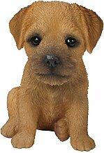 Pet Pals Border Terrier, Welpe