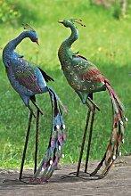 Pfauenpaar