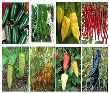 Pfeffer Seeds 12 Arten Hot Pepper Mix Chili 500