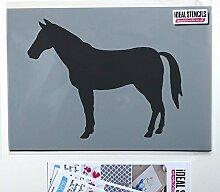 Pferd außenschablone. Bauernhof Yard Tier Malen & Dekorieren ideal Stencils. Farbe auf Wände Stoffe & Möbel Heim Dekoration & Kunst Handwerk einfach & lustig