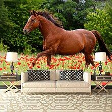 Pferd Wandbild Rote Mohnblumen-Blumen Foto-Tapete Kinder Schlafzimmer Haus Dekor Erhältlich in 8 Größen XXX-Groß Digital