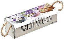 Pflanz-Set essbare Blumen Violett Holzkasten watch me grow Geschenkset von notrash2003®