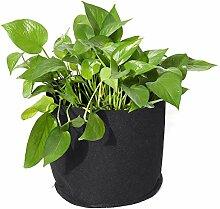 Pflanze Wachsende Tasche Gallone Kartoffel
