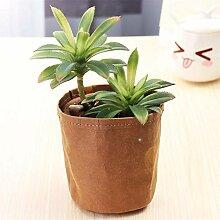 Pflanze Wachsende Tasche Gartendekoration 9x12cm